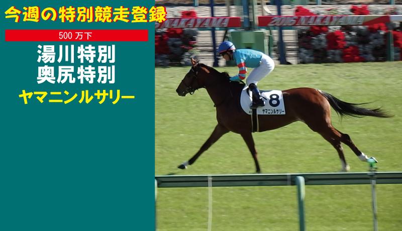 ヤマニンルサリー 函館・特別競走登録!